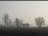 diary-2012-03-16