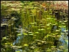 diary-2012-04-29-spejling