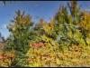 diary-2012-10-13-xi