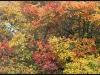 diary-2012-10-27-xxxviii