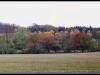 diary-2012-11-10