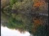 diary-2012-11-11-xxiii