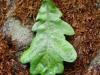 november-blad-groen