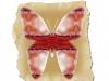 trae-sommerfugl