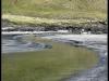 Faroe Islands 2011 - Omgivelser IV