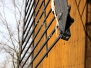Frilandsmuseet 2009-06-04