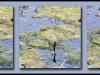 Fuglereservatet 2011-06-13 IV