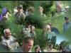 Fuglereservatet 2011-07-03