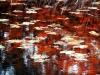 vandmaleri-2