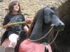 Kim til hest II