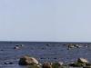 Panorama fra Thorhamns udde naturreservat