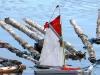 Sydhavnen - Den mindste båd