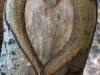 Stevns Klint VIII